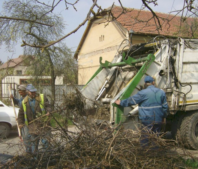 Curatenie de toamna in Timisoara
